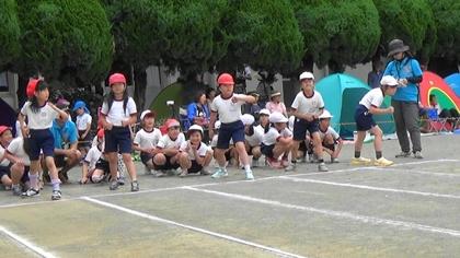 50m走 (2).jpg