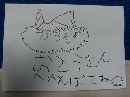 _20170619_054426.JPG